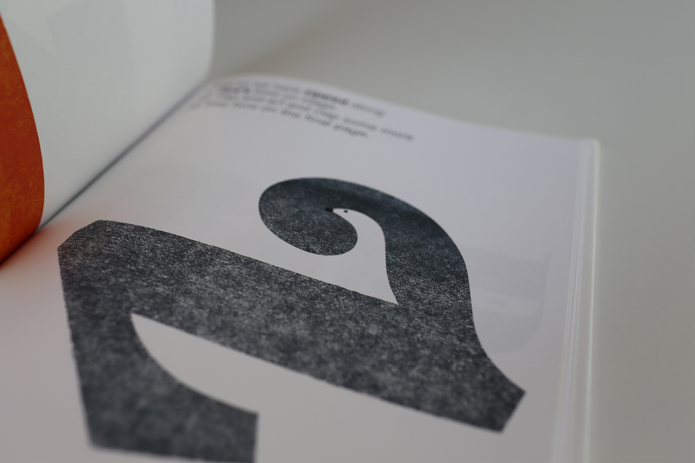 typefaces font letterpress print poster tee t-shirt tshirt editorial childrens kids CHILDS negativespace hidden