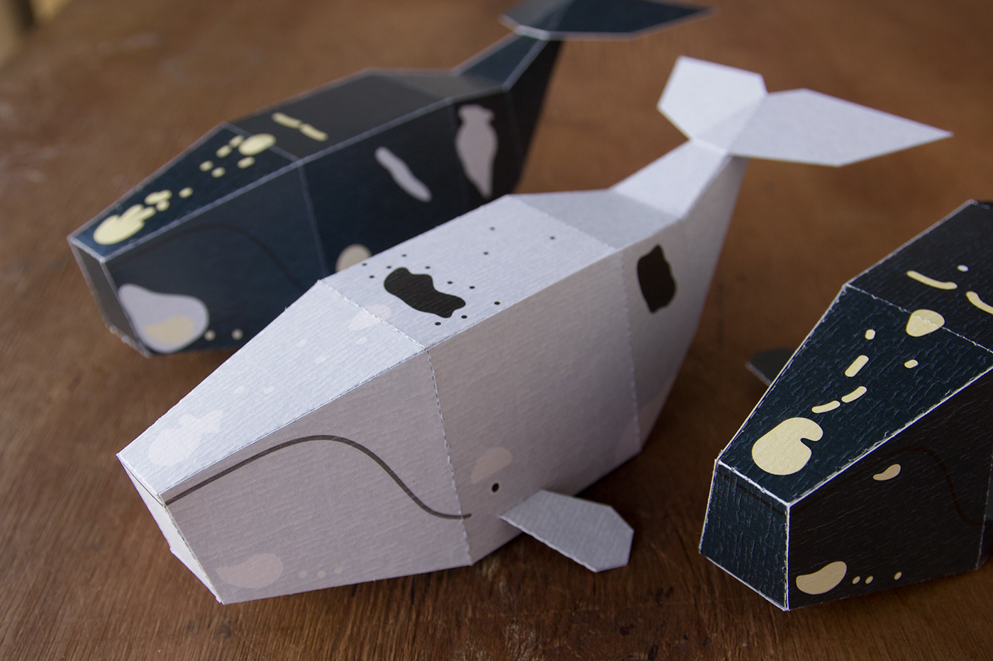 papercraft lowpoly paperkit paperwhale whales guardabosques southernrightwhale icb papertoy DIY
