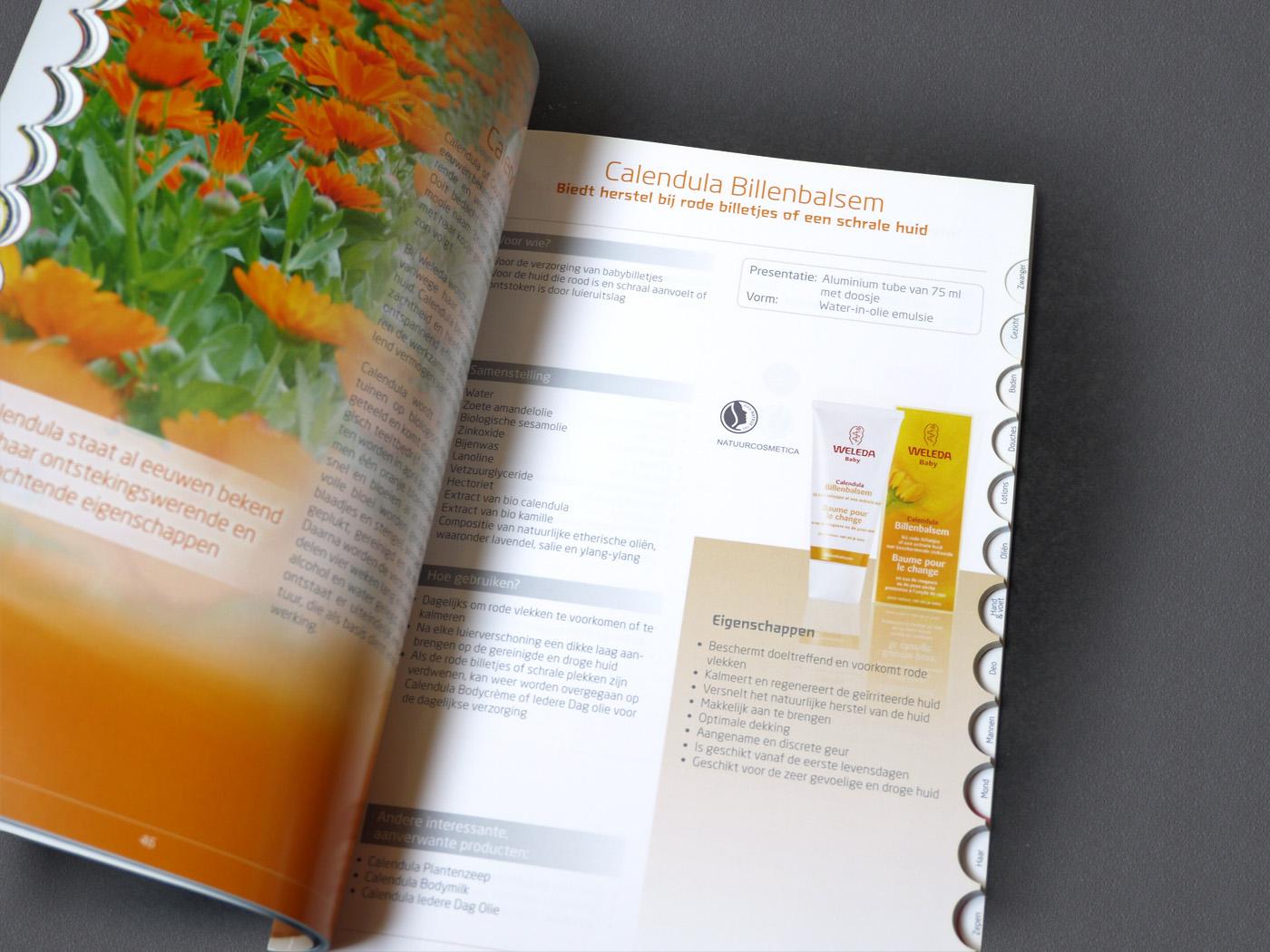 Guide book brochure