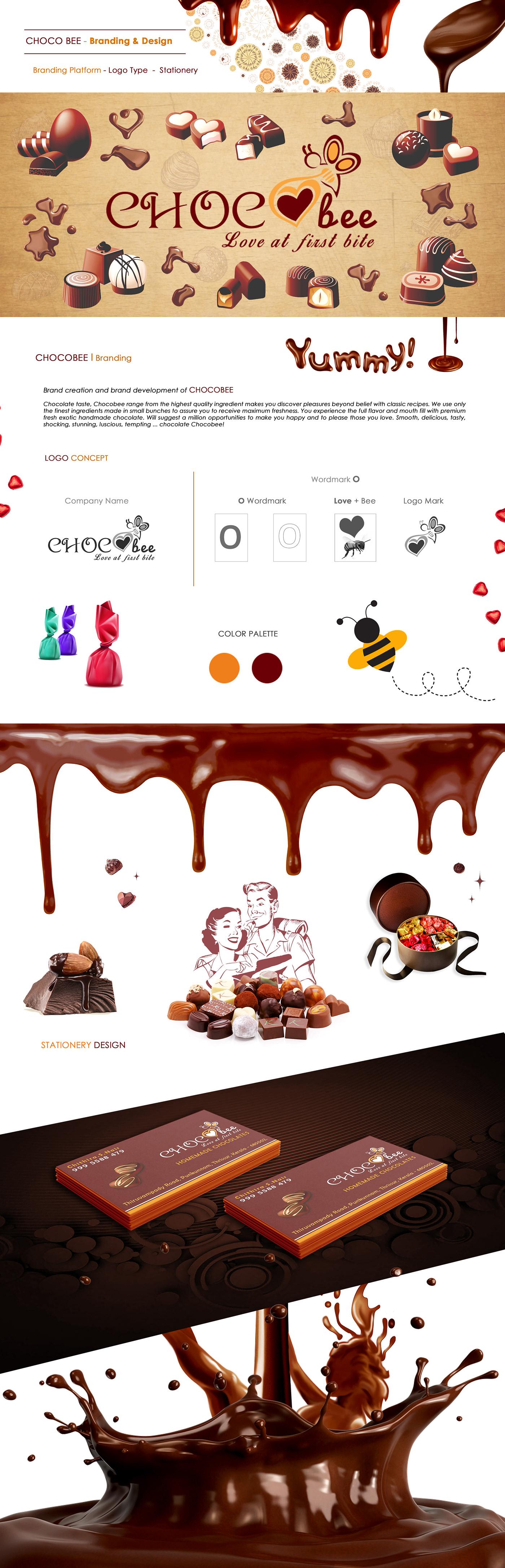 chocolate branding  ILLUSTRATION  graphics flavor discover color print concept idea