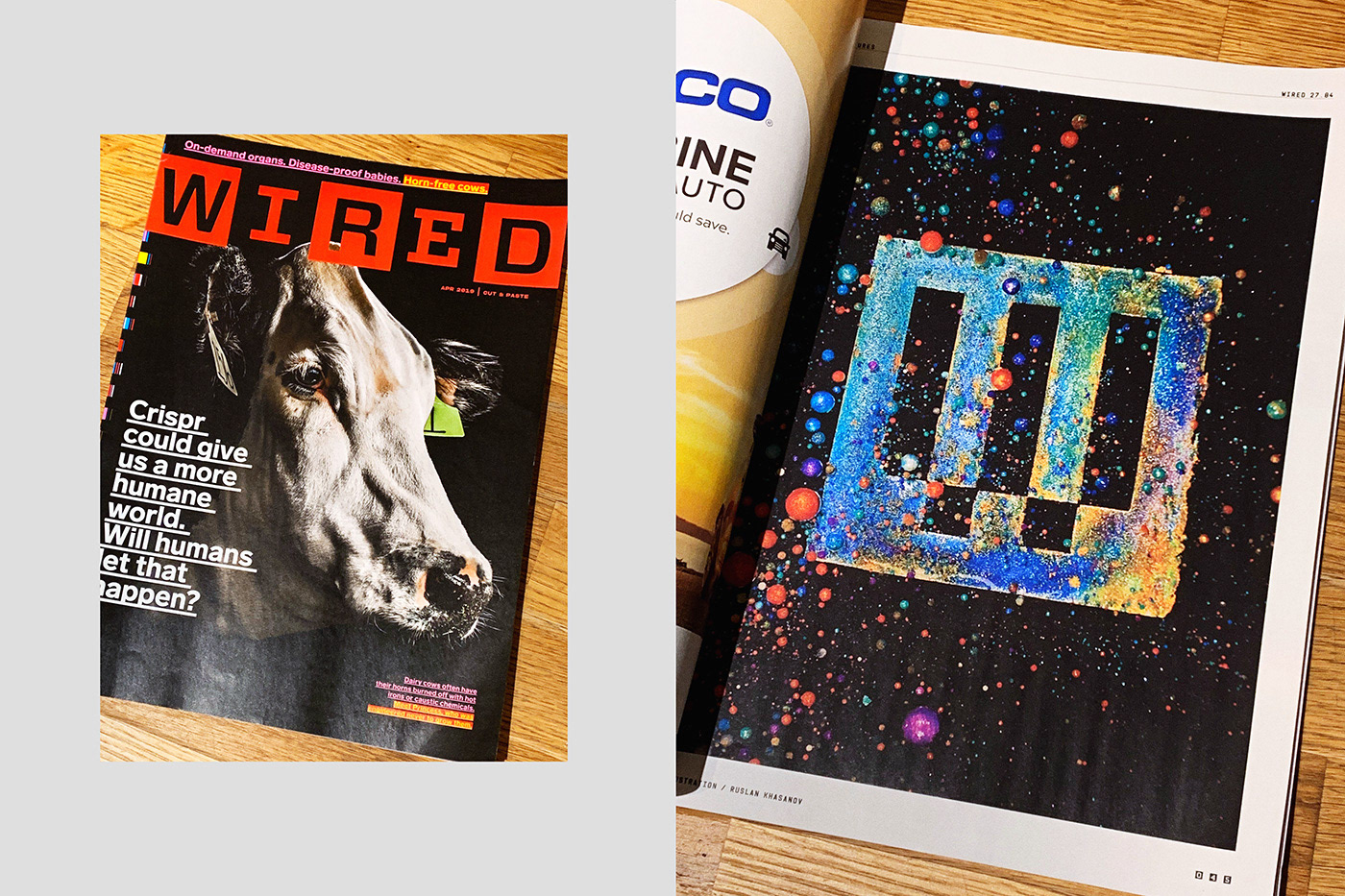 art videoart Wired magazine liquidate ruslan khasanov photo sonya7r2 macro color