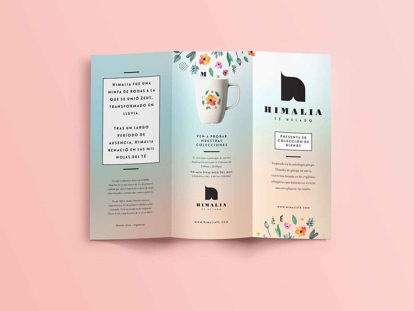 brand tea leaves Flowers gourmet Pastels Calligraphy   typography