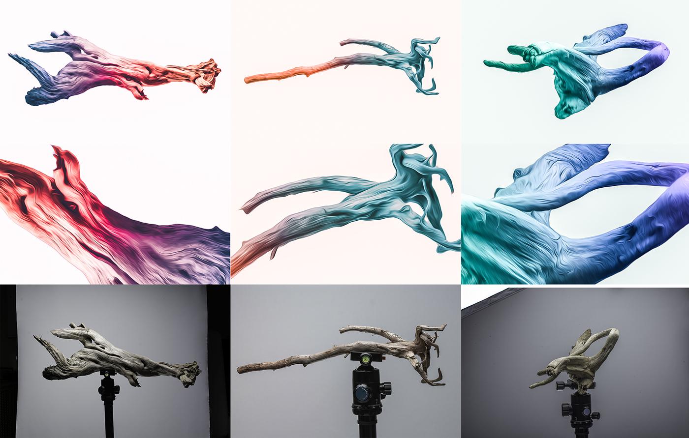 Nature Nikon Canon studio Photography  paint photoshop digital art