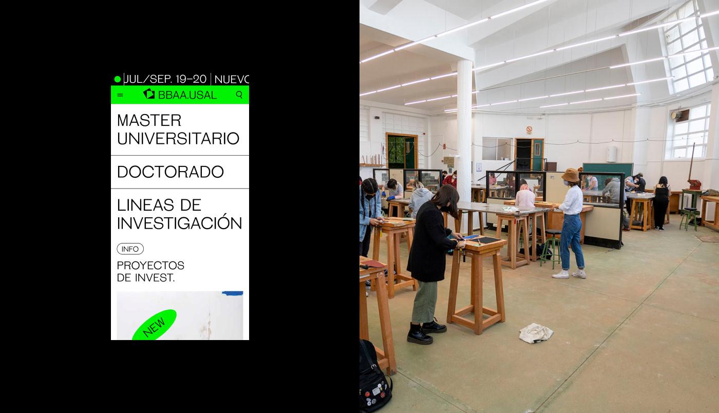 art brand colours Fine Arts  graphic design  University USAL ux Web Web Design