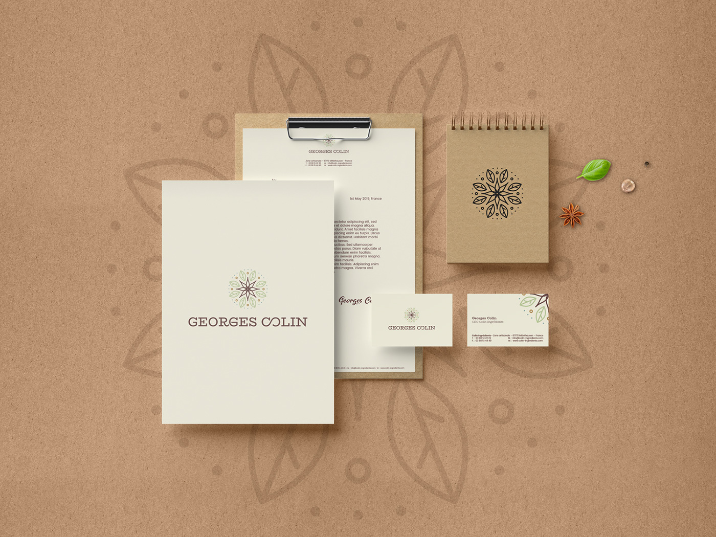 packaging design Branding design Logo Design Food Packaging Packaging branding  design graphic design  logo Design Director