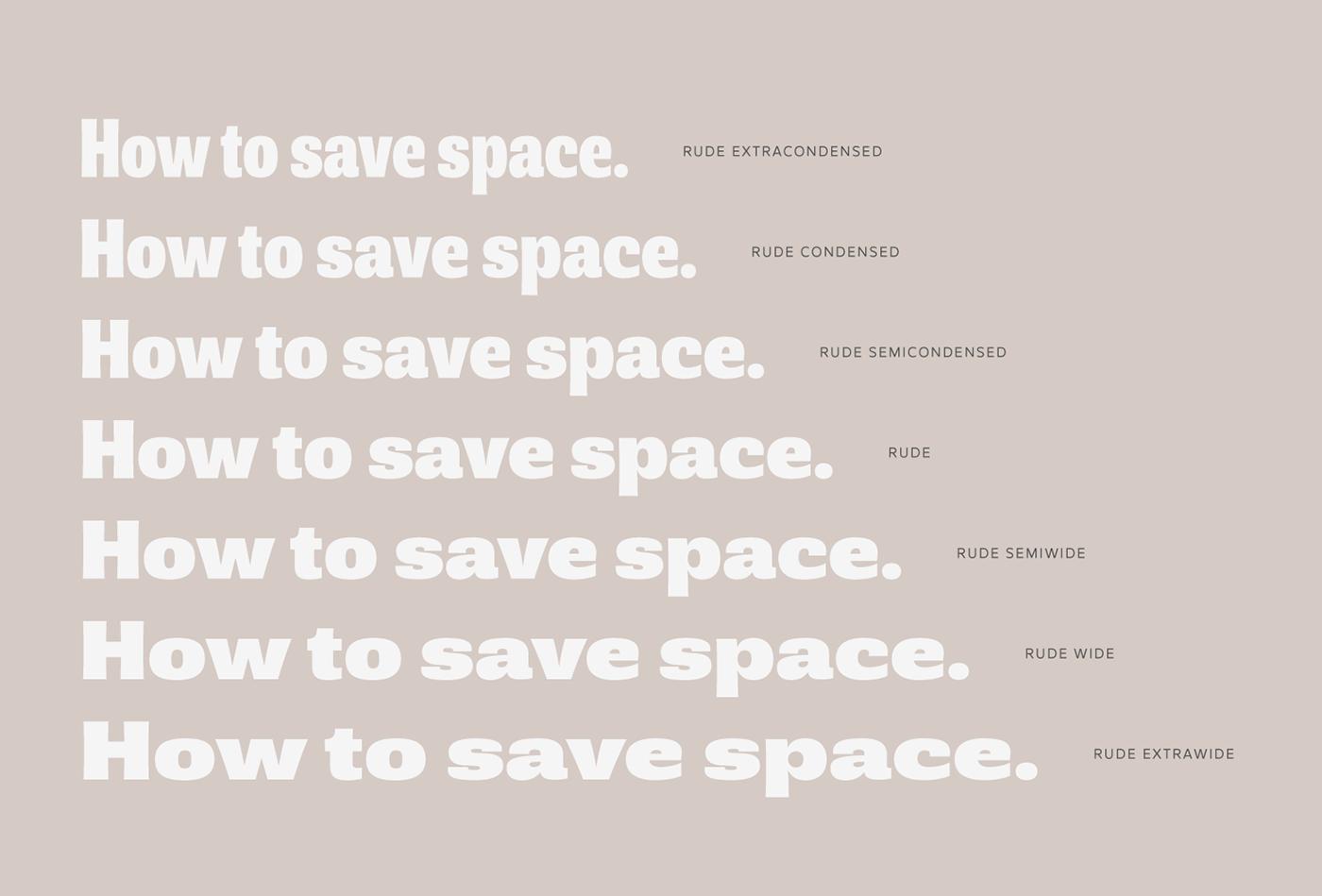 Rude Pedro Leal Typeface font sans slab DSType