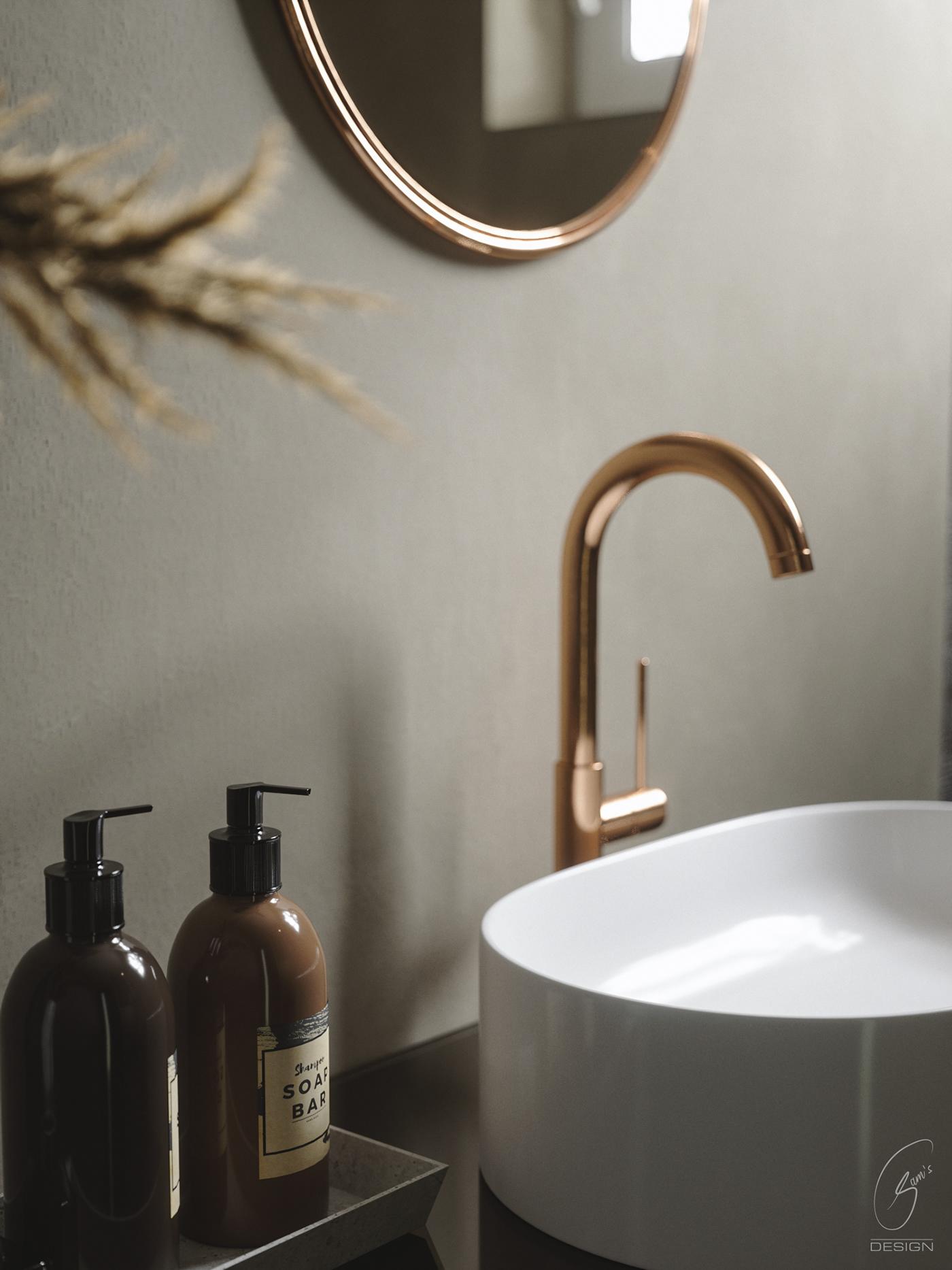 3dsmax archviz browncolors FStorm toilet