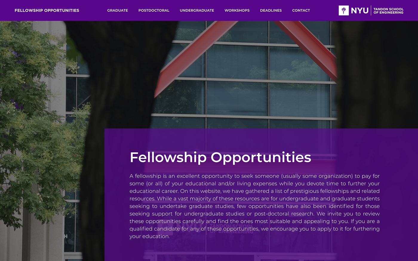 new,york,University,tandon,school,Engineering ,Fellowship,opportunities,Dhruv,avdhesh