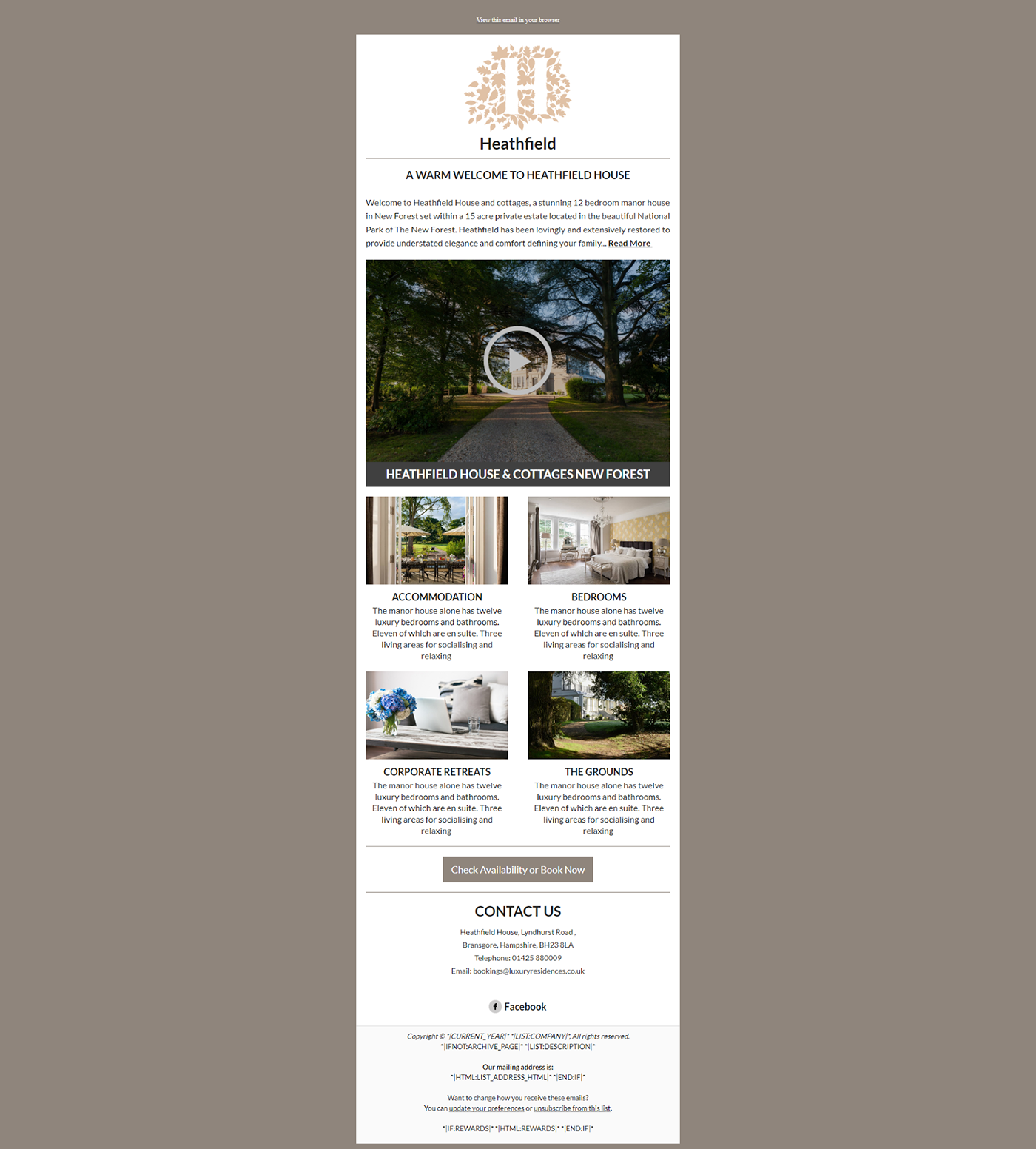 Email Template For Website Promotion On Behance