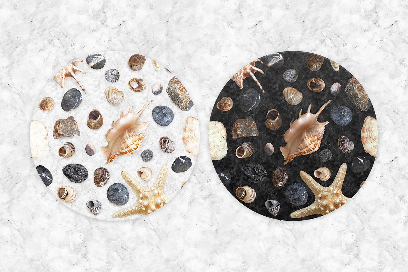 Mockup shell texture marine creator branding  stone souvenir Isolated free