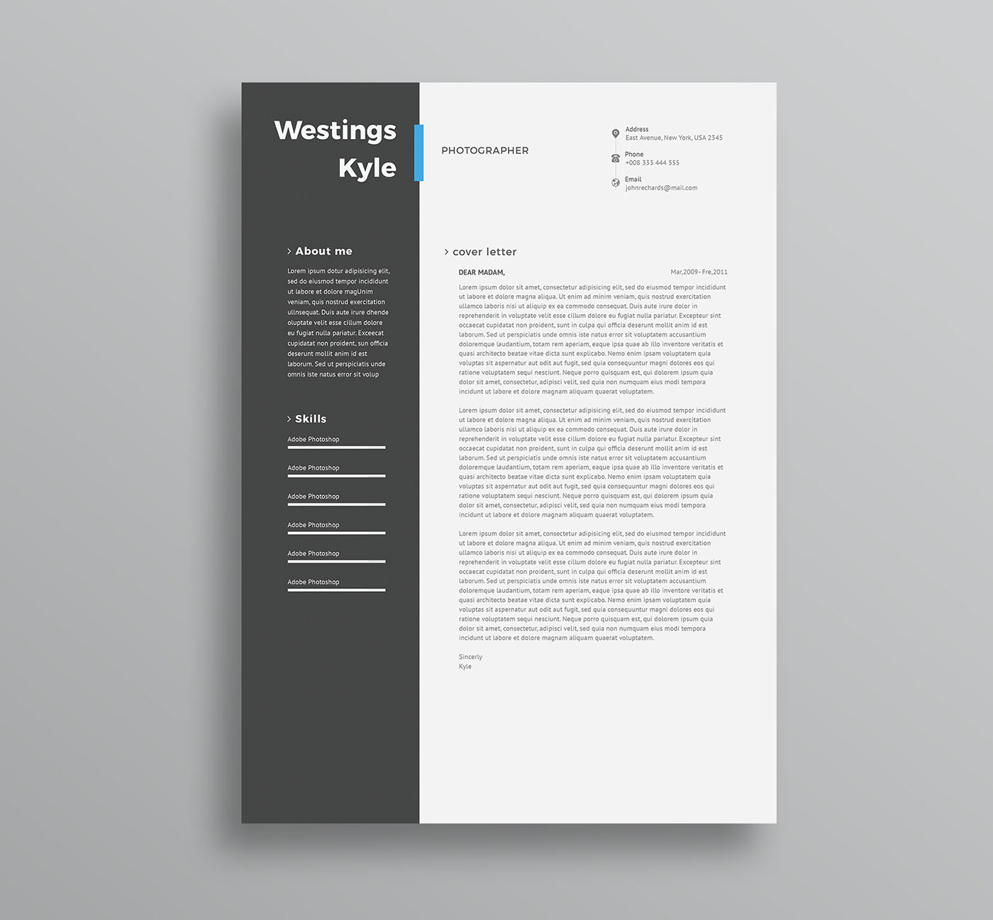 free professional resume template  cv  in word and ps on