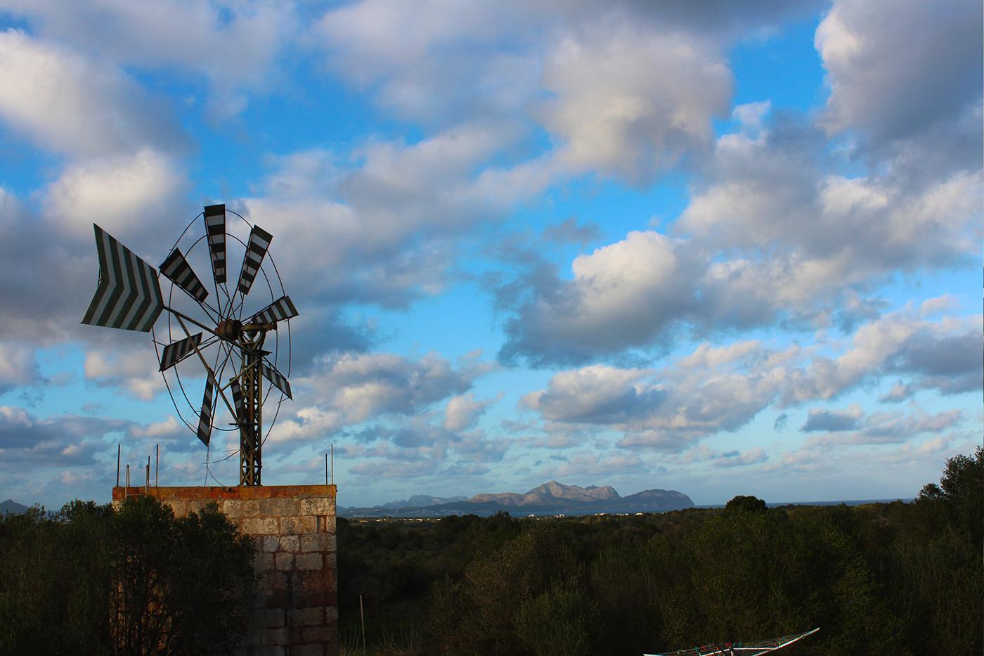 calm green Palma de Maiorca photo rural spain