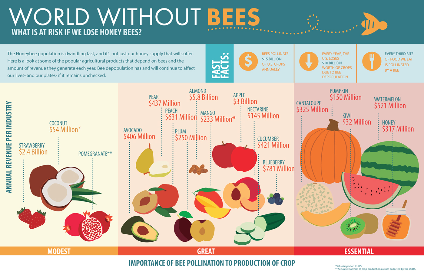 Abc D Bb on Honey Bee Life Cycle Chart