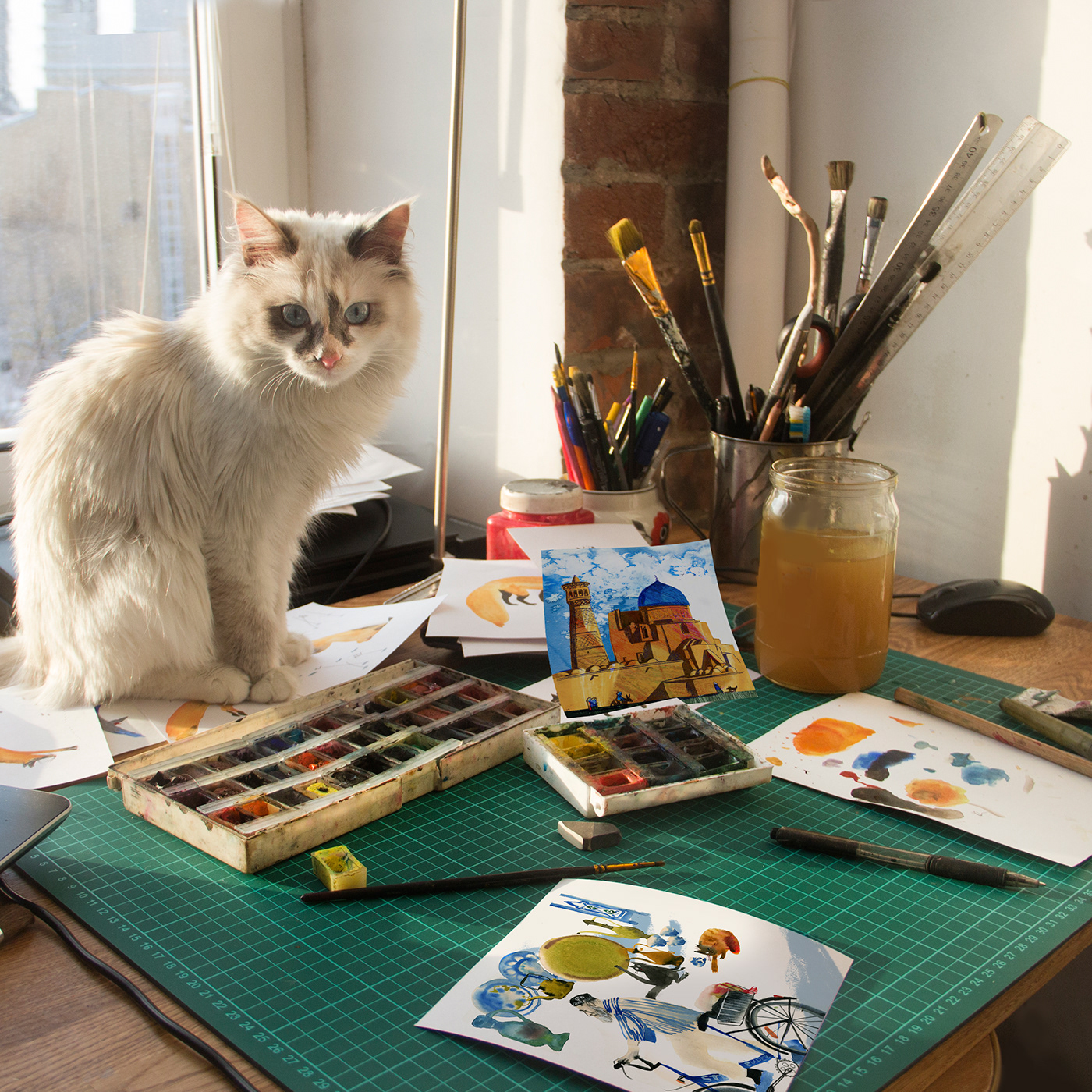 Изображение может содержать: кот, стол и сидящий