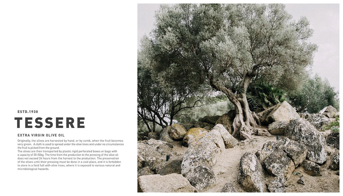 3D bolimond bottle extra virgin olive Olive Oil package Packging Tree