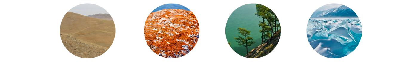 Logotype identity Territorial identity tourism ecological Nature colorful gif animal