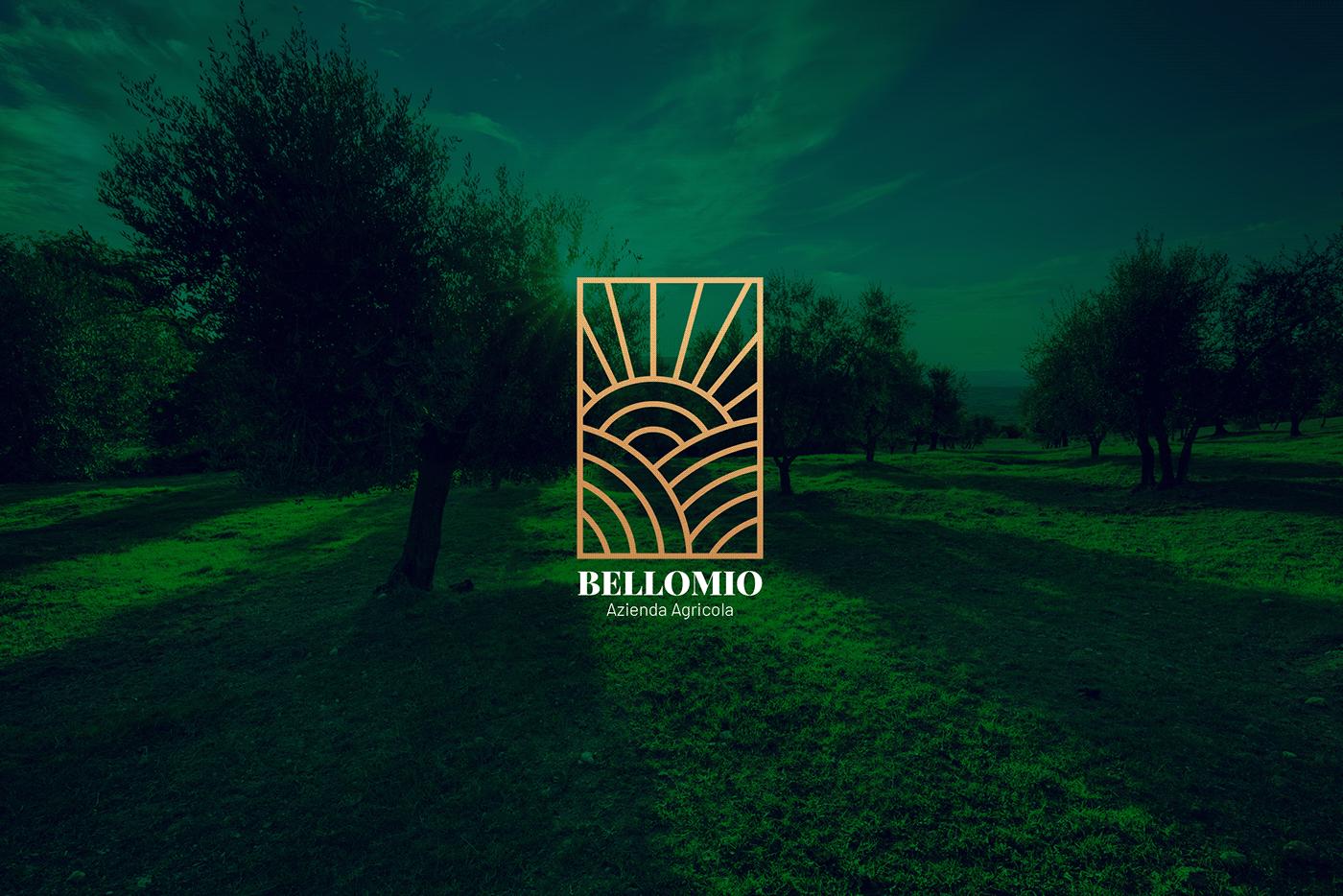 branding  logo progettazione grafica