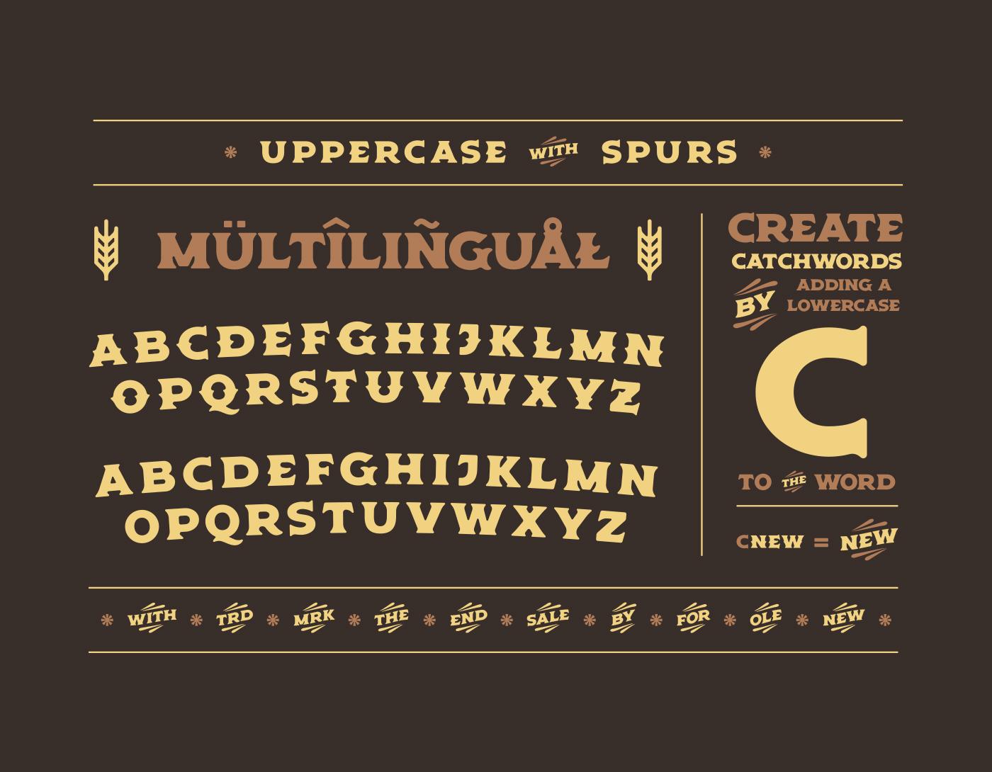 bold Display font fonts americana inked rough old Spirits liquor