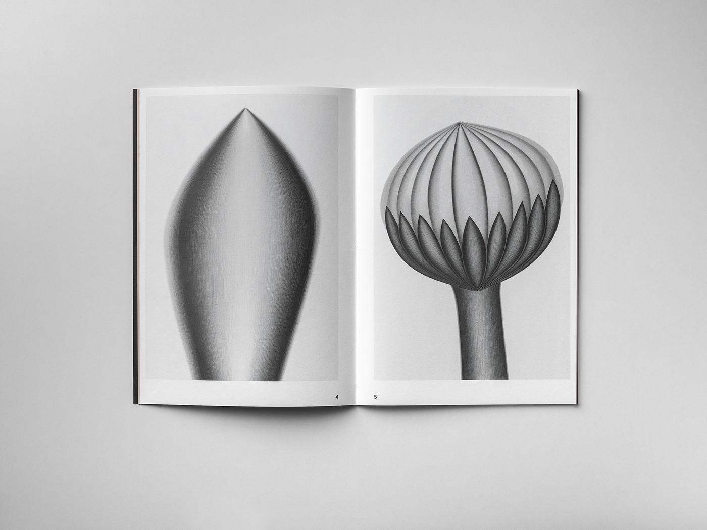 art design editorial graphic