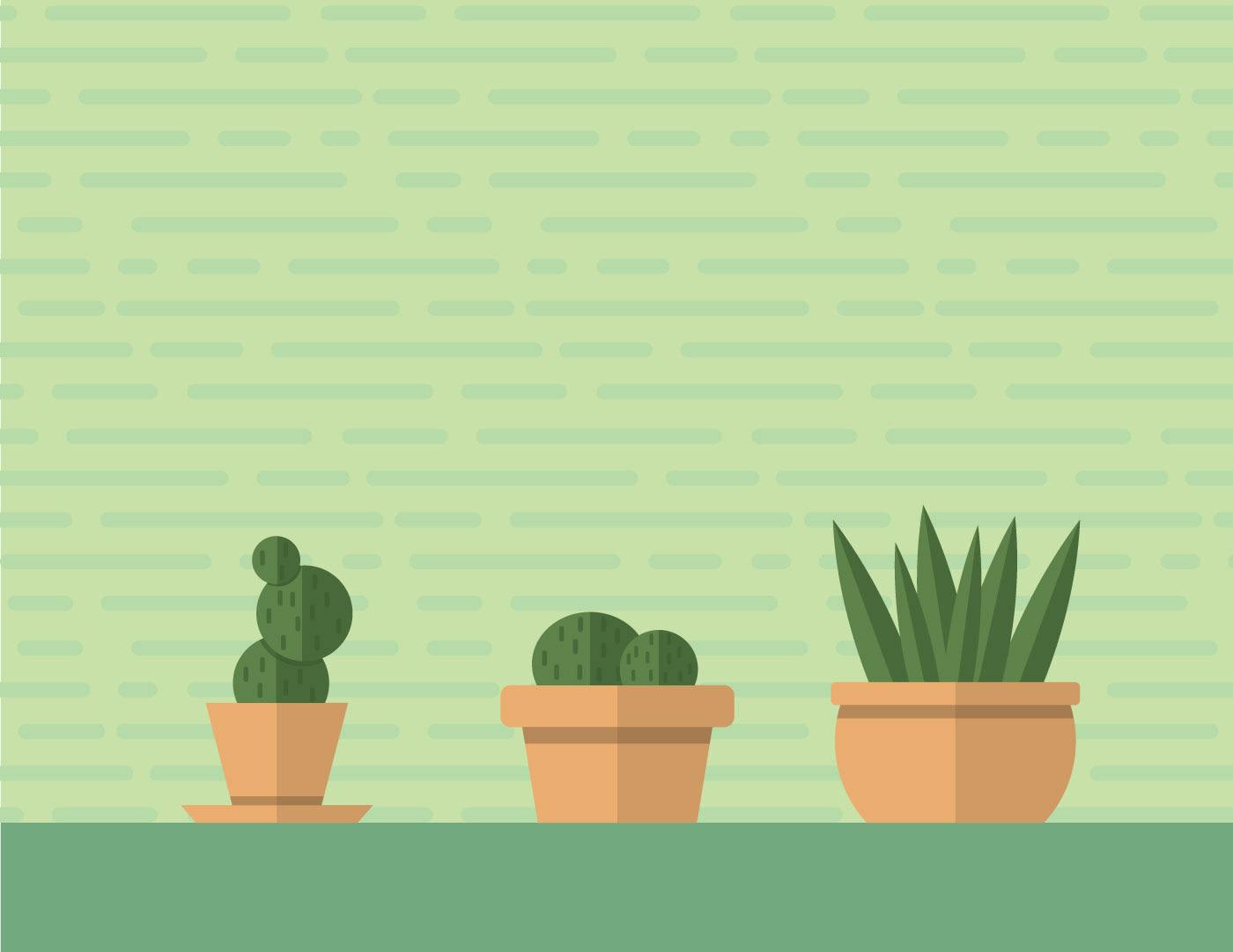 Succulents cactus cacti ILLUSTRATION  Plant pot green