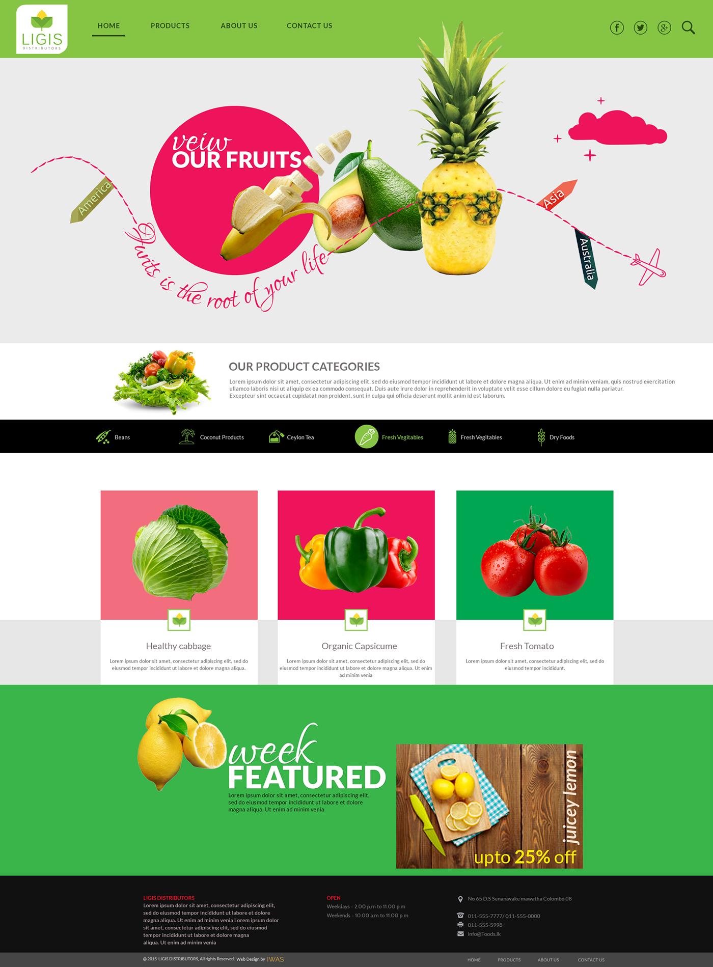 Foods export company UI on Behance
