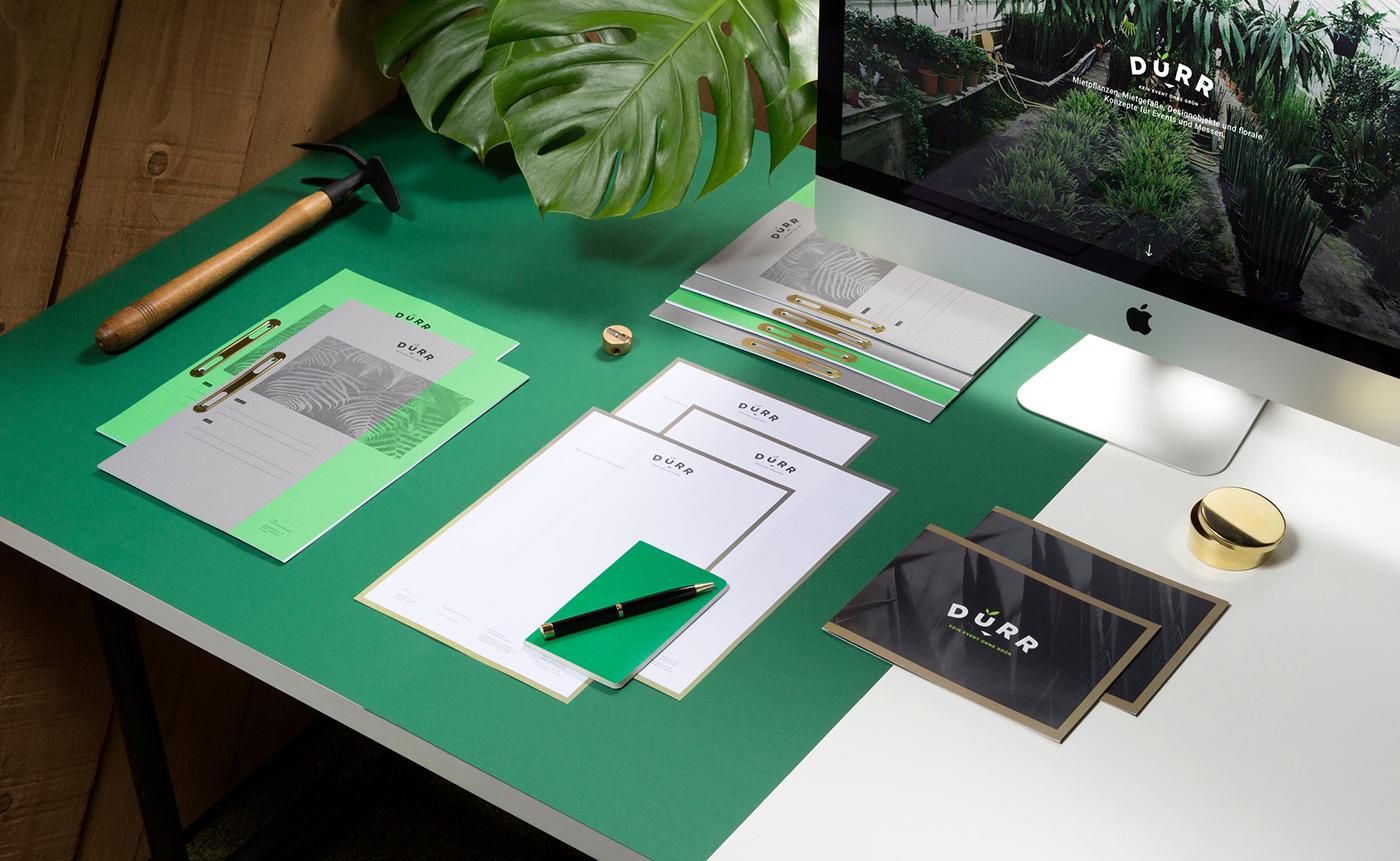 flower blumen green grün design pflanzen plants paper branding