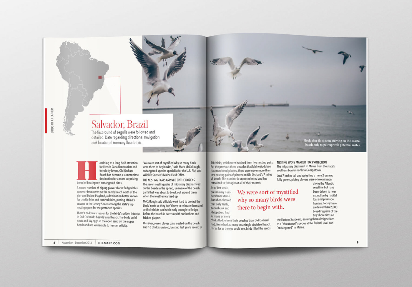 Magazine Layouts On Behance Piping Layout Meaning 2016