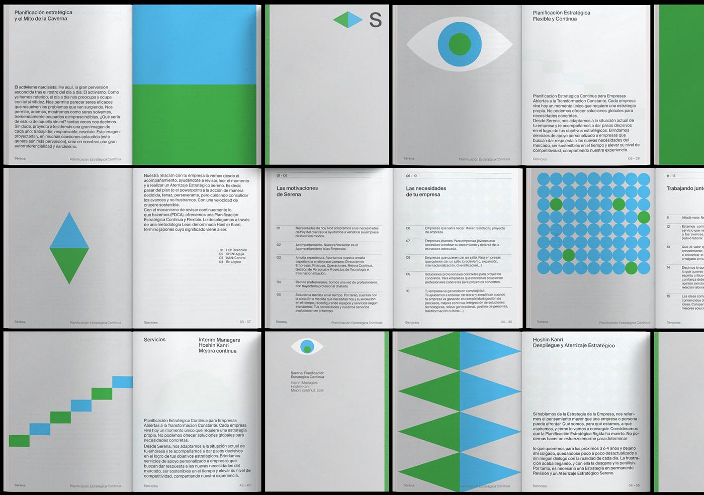 animation  brand Consulting editorial design  granada motion Plácida serena