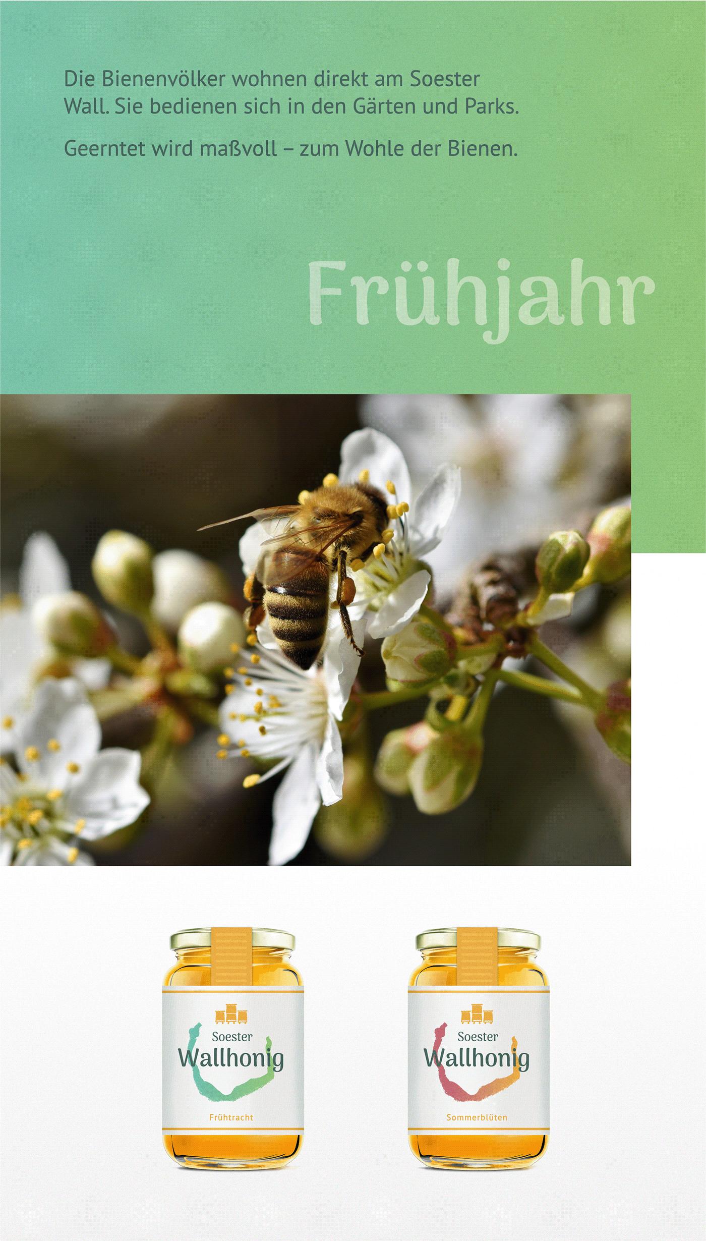 flower with a honeybee