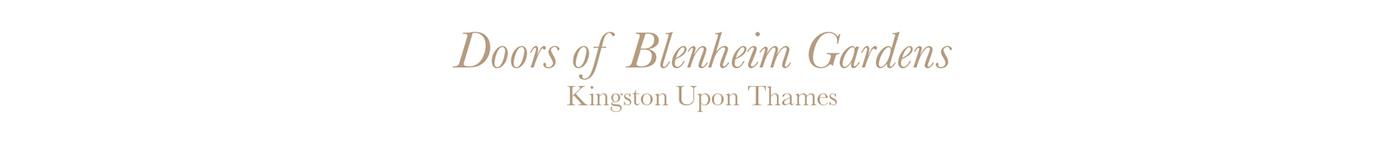 kingston London kingston upon thames Doors british architecture ILLUSTRATION  england UK