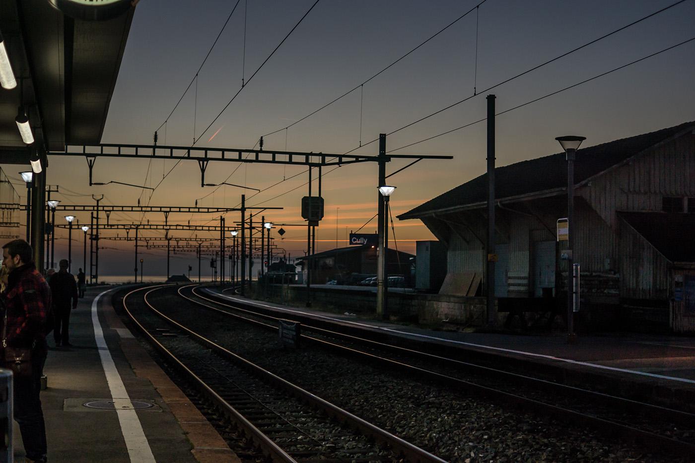 photo shoot photo vineyard Photography  lavaux Switzerland Fall