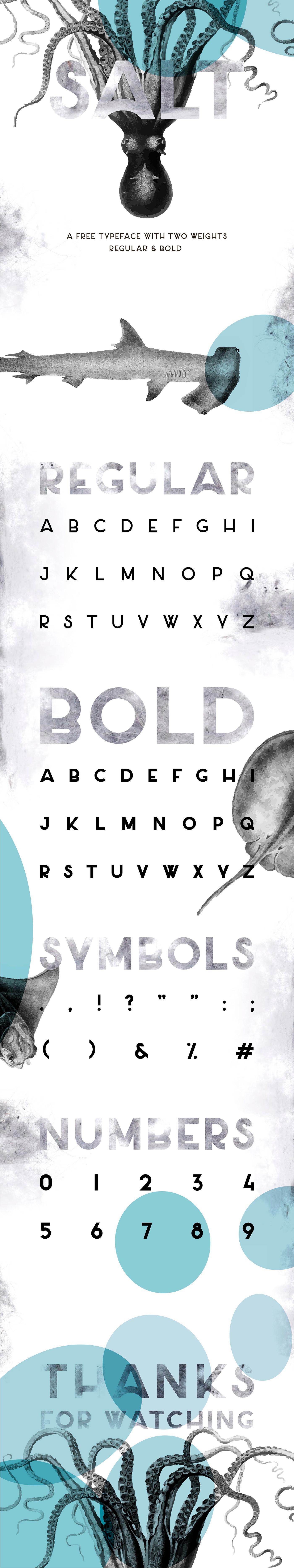 free font sans serif minimalist Salt uppercase masha chuprova irkutsk