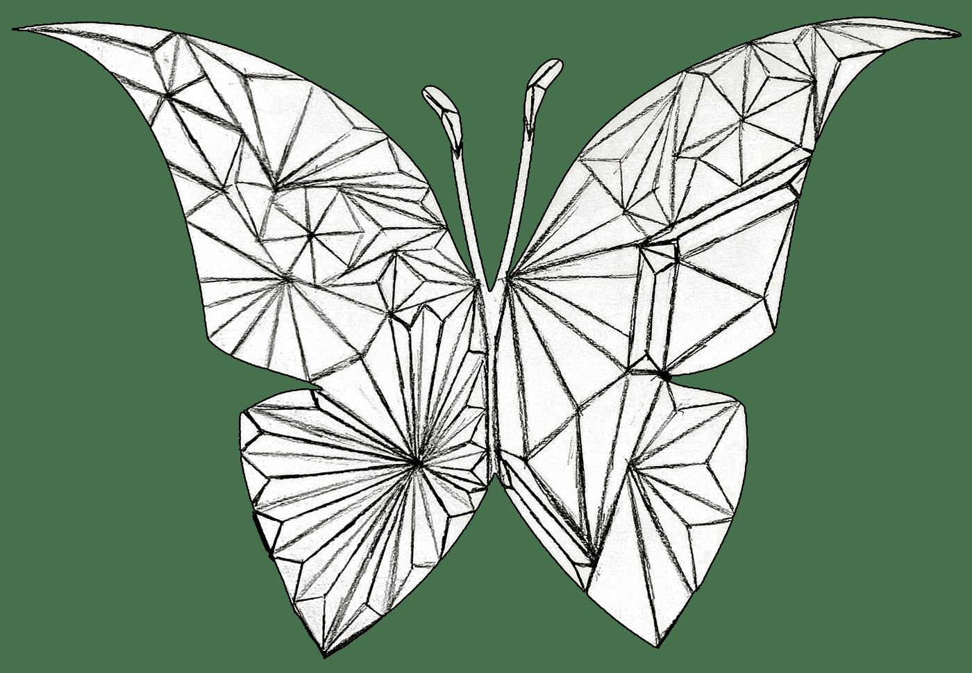 Spirited Wings On Behance