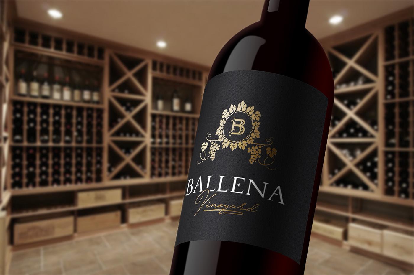 vine wine vineyard vinery bottle monogram B letter vine bottle Cellar grape