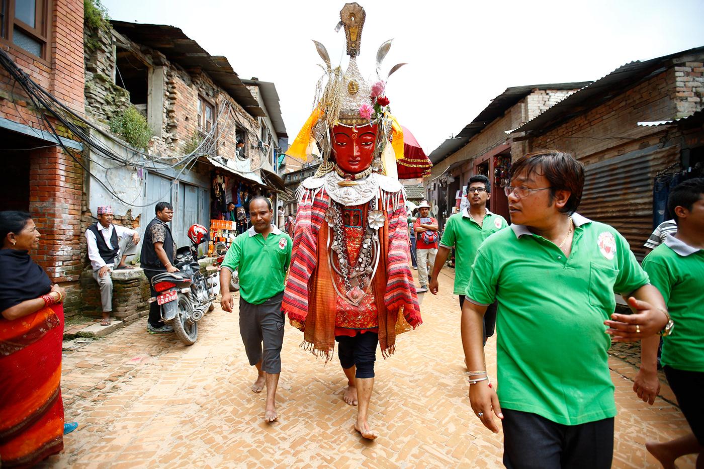 Nepalese cock — photo 6