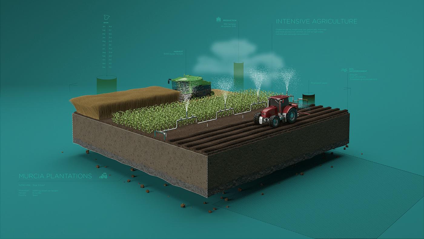 eco Plant stone microorganism Cultivation 3D scenary water soil citrus