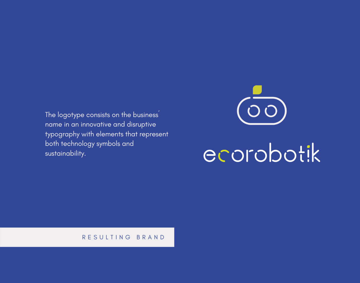 brand identity branding  Graphic Designer logo