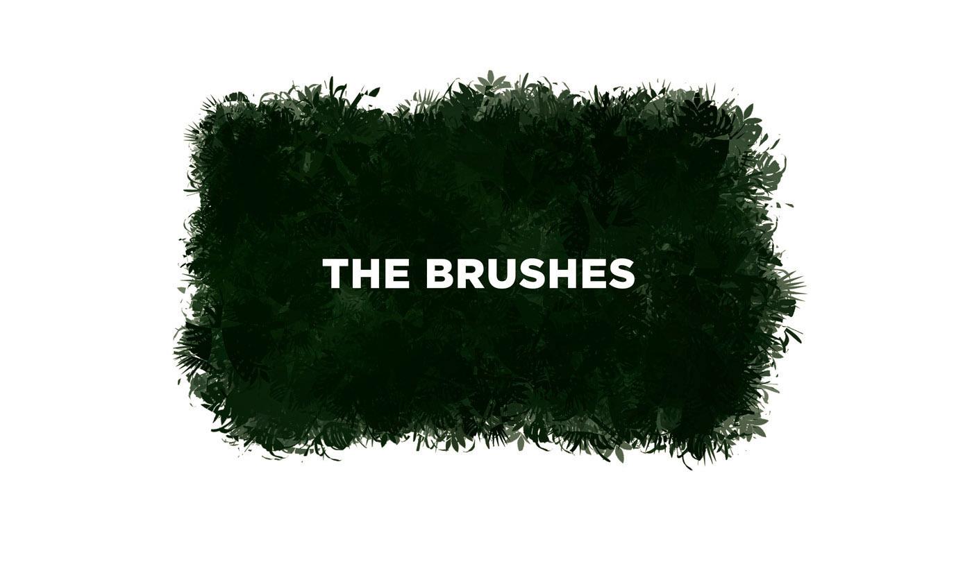 Procreate brushes vegetation plants Drawing  ILLUSTRATION  sketching