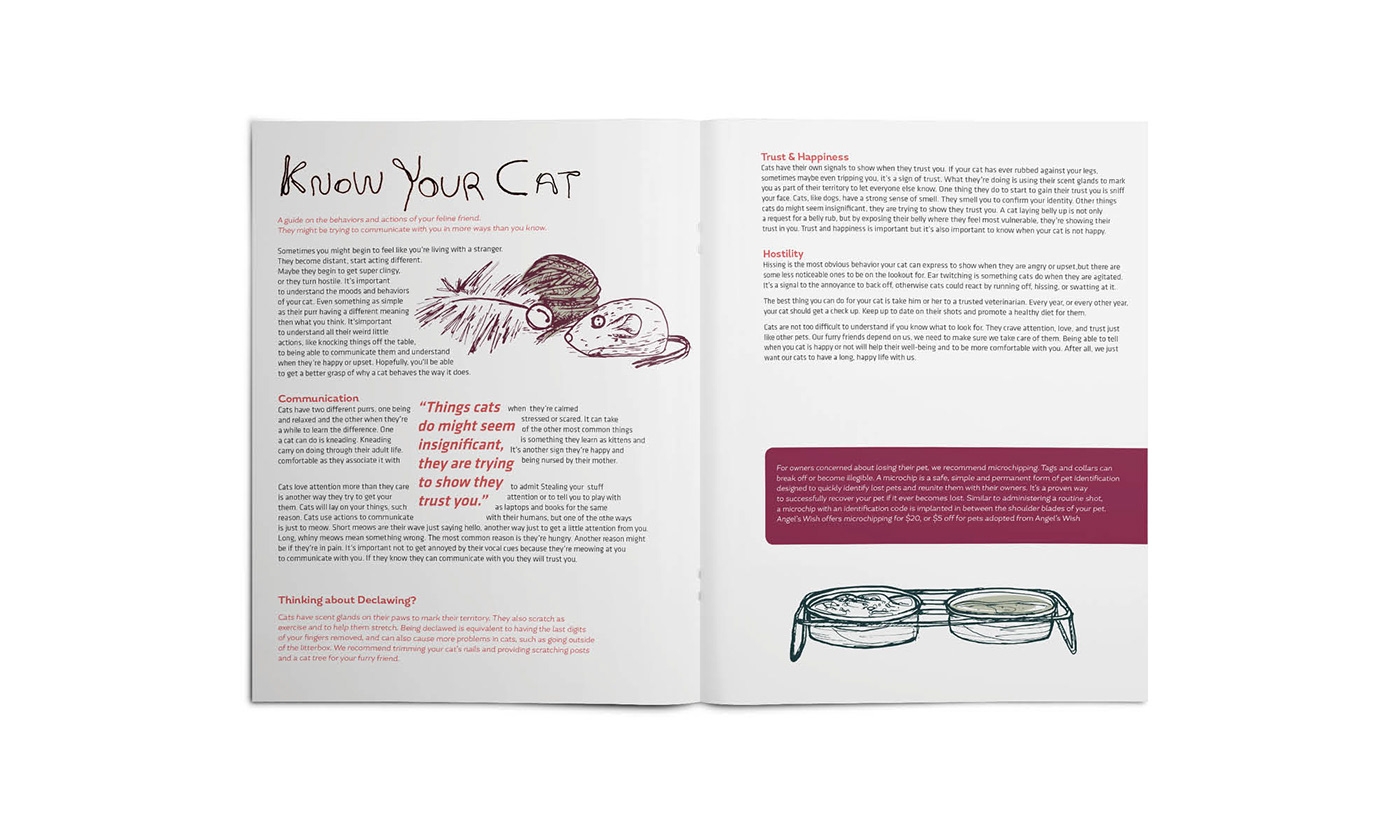 Cat brochure ILLUSTRATION  Drawing  yarn