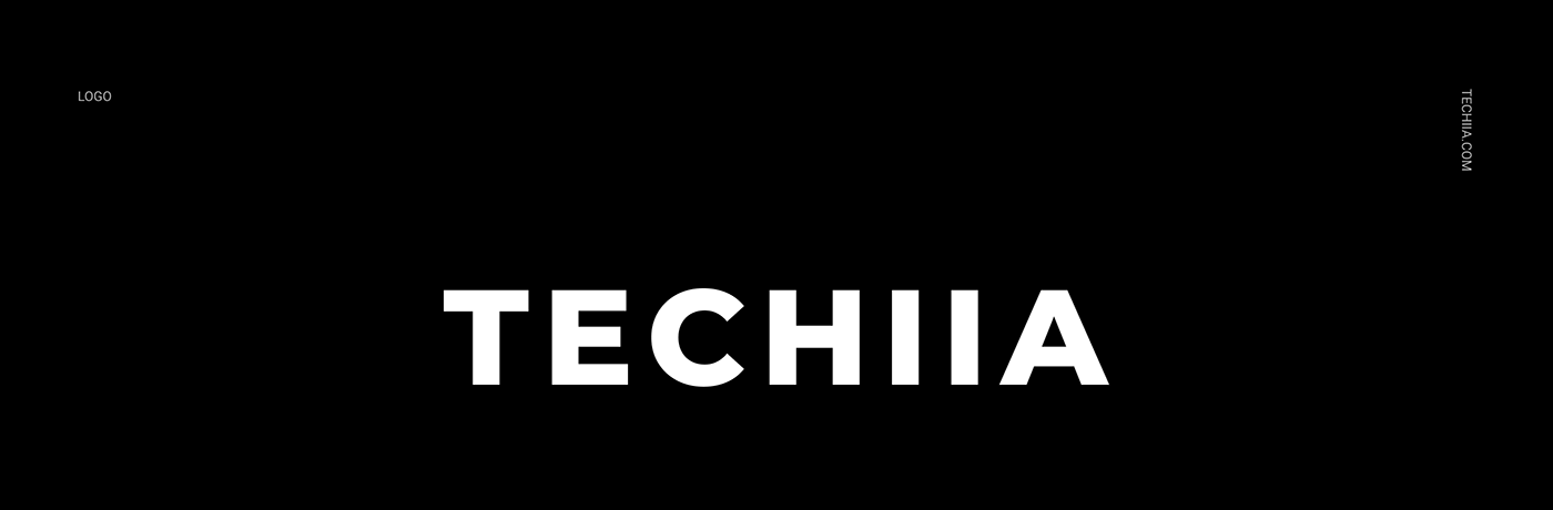 branding  color identity motion design typography