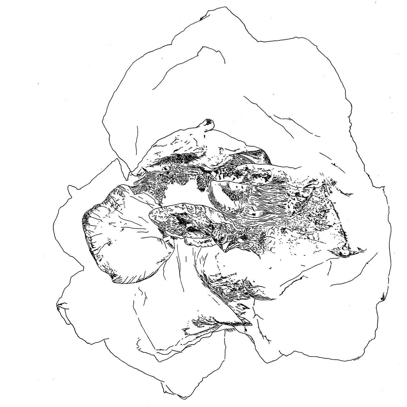contemporaryart Modernart abstractart artwork ILLUSTRATION  blackandwhite art Drawing  Fine Arts
