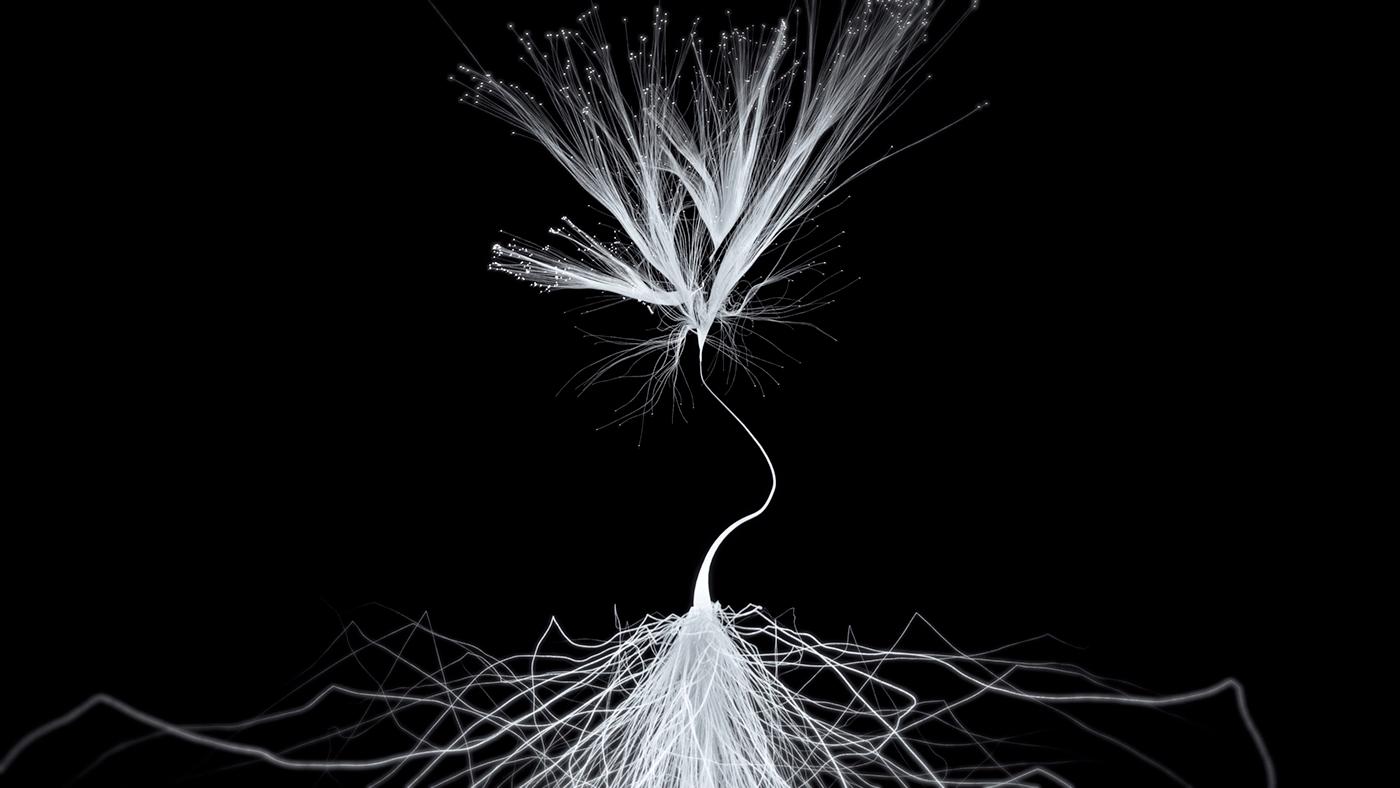 Multimedia  audiovisual motion design animation  Performance Netherlands Twelve-lab immersive particles symptosis