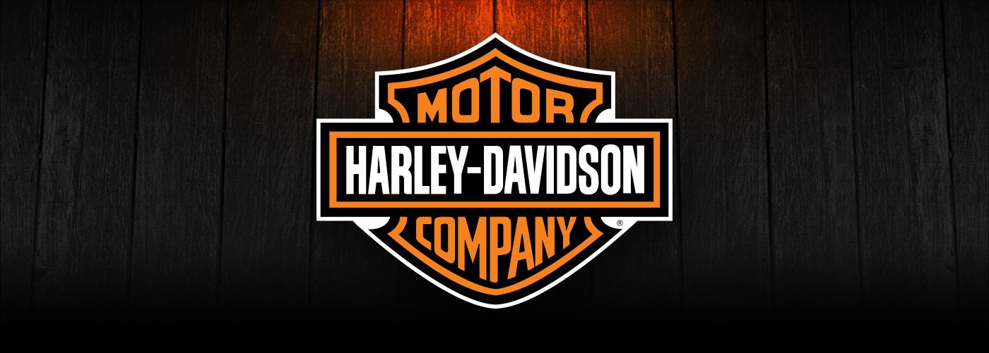 New Harley Davidson Designs