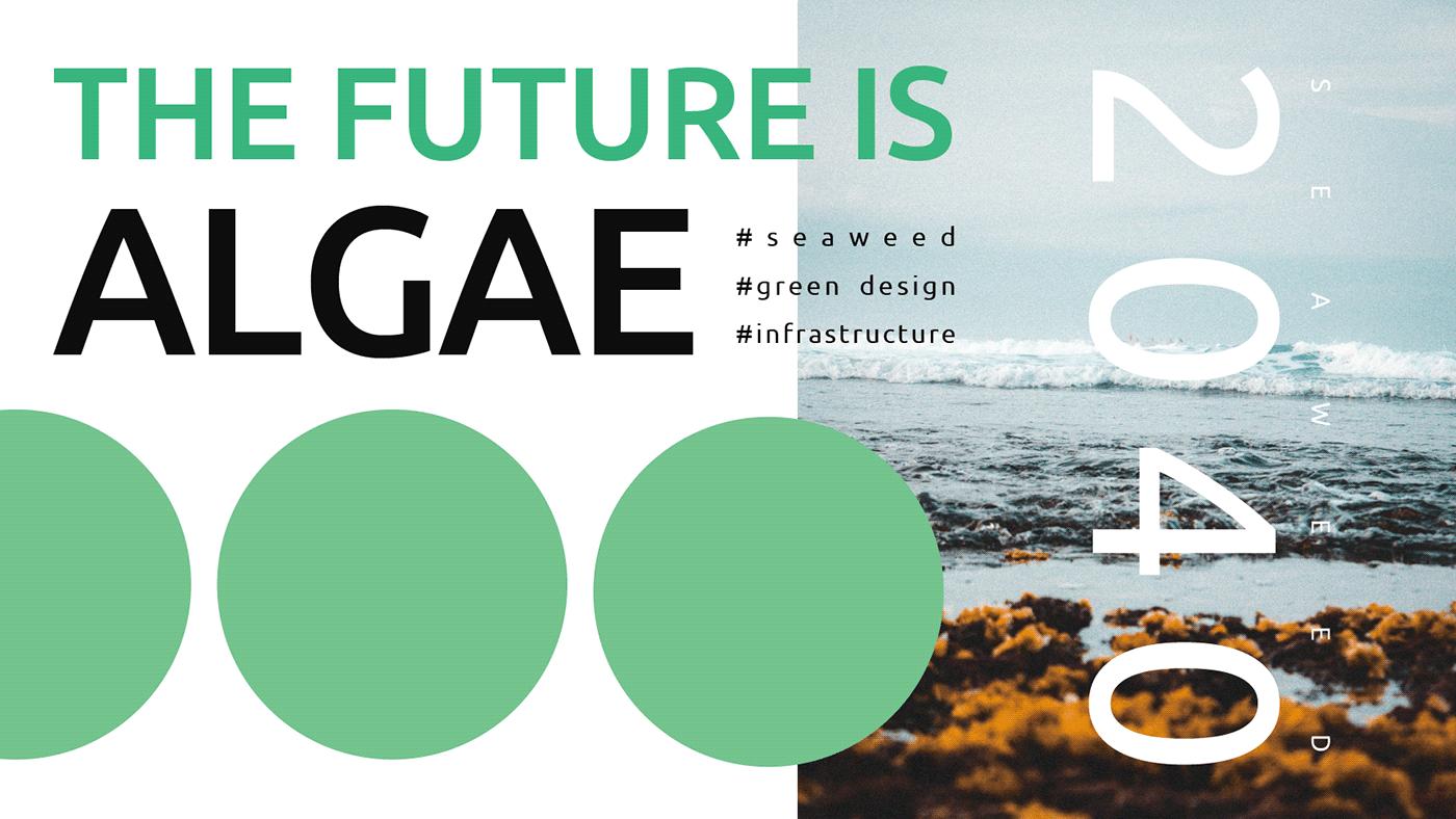 algae automation eco farm future green infrastructure Ocean product seaweed
