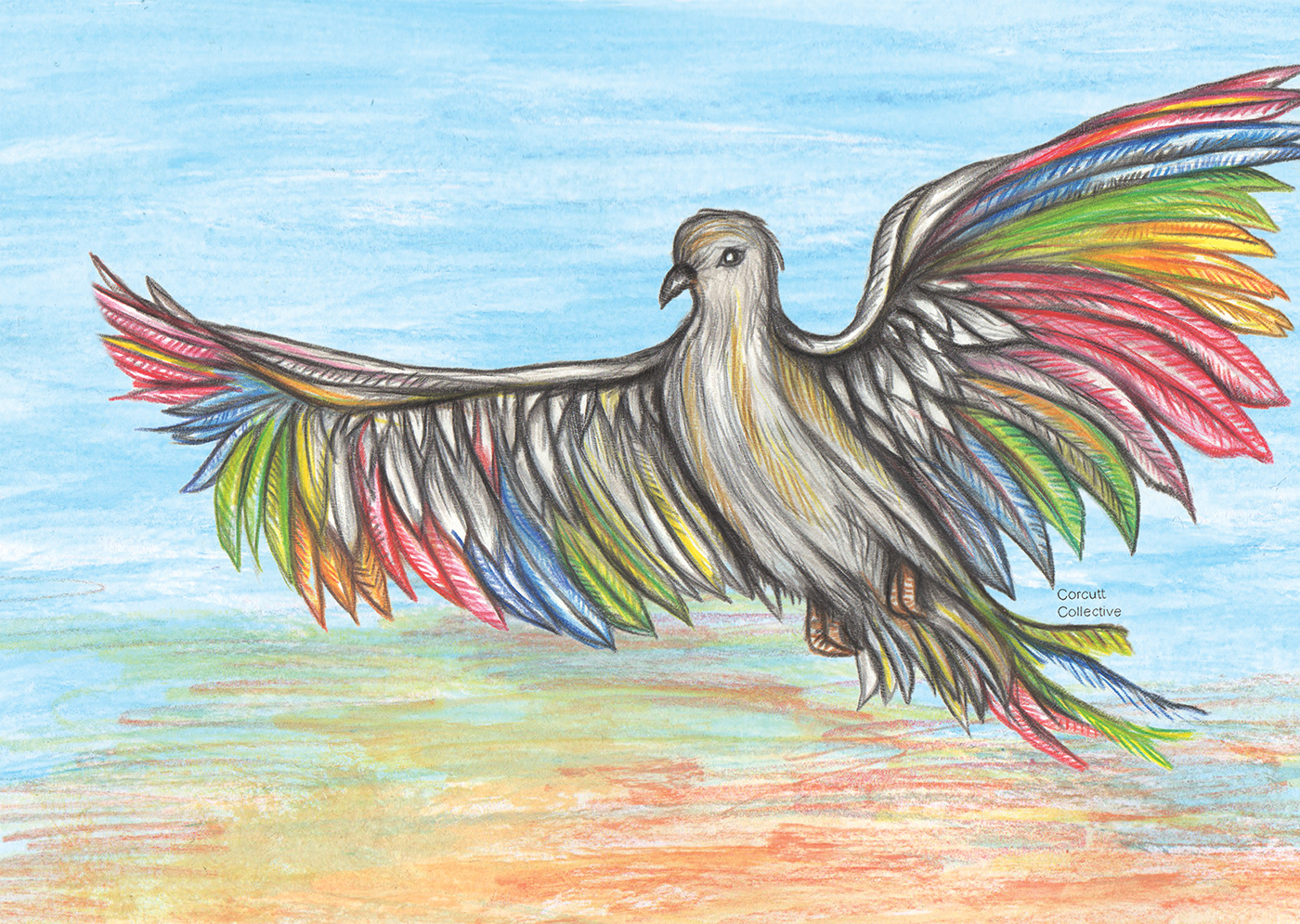 Bird drawings on behance