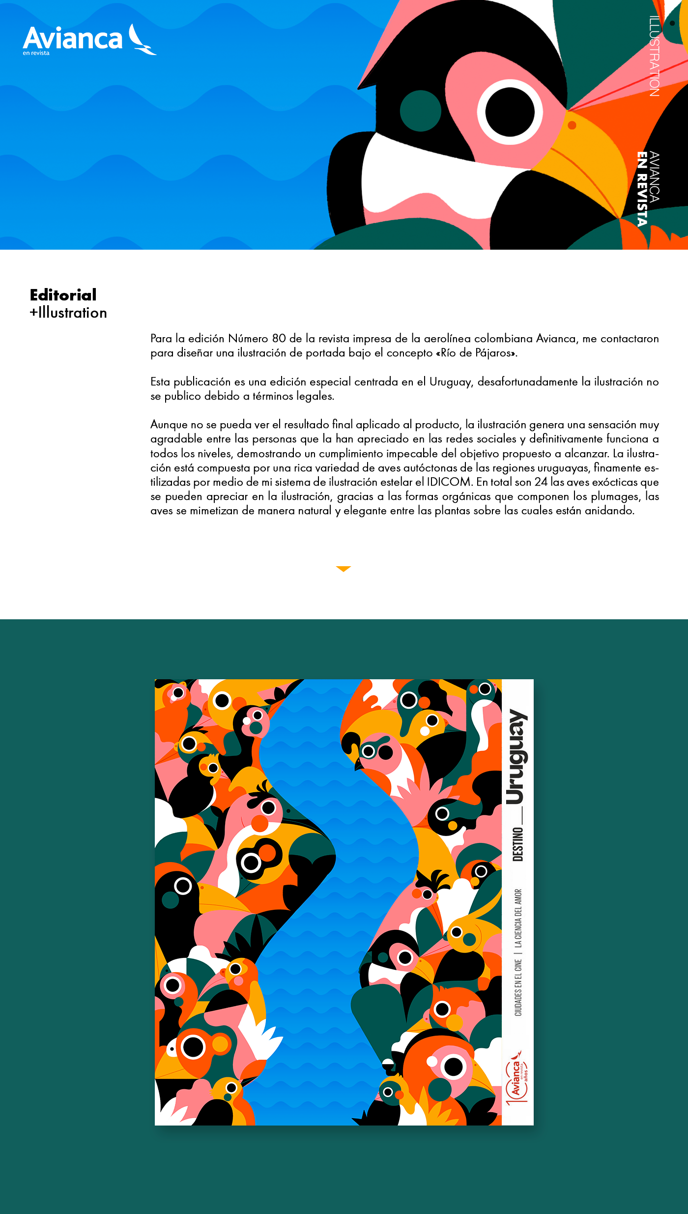 aves Avianca birds cover flat illustrtion ilustracion Jhonny Nuñez magazine revista Vector Illustration