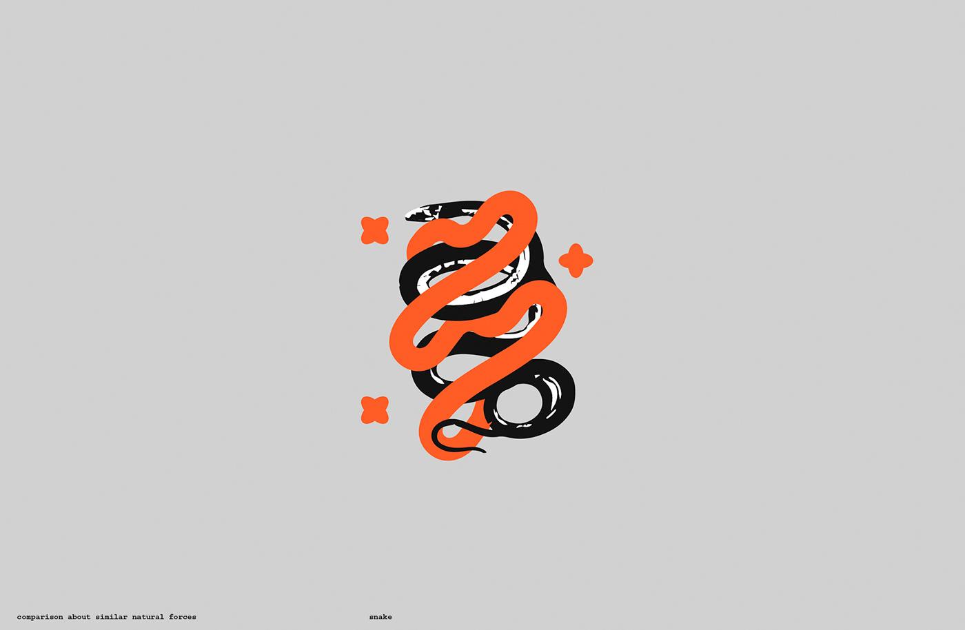 Mutisia beer craft keeg  bottle orange conceptual snake industrial minimal