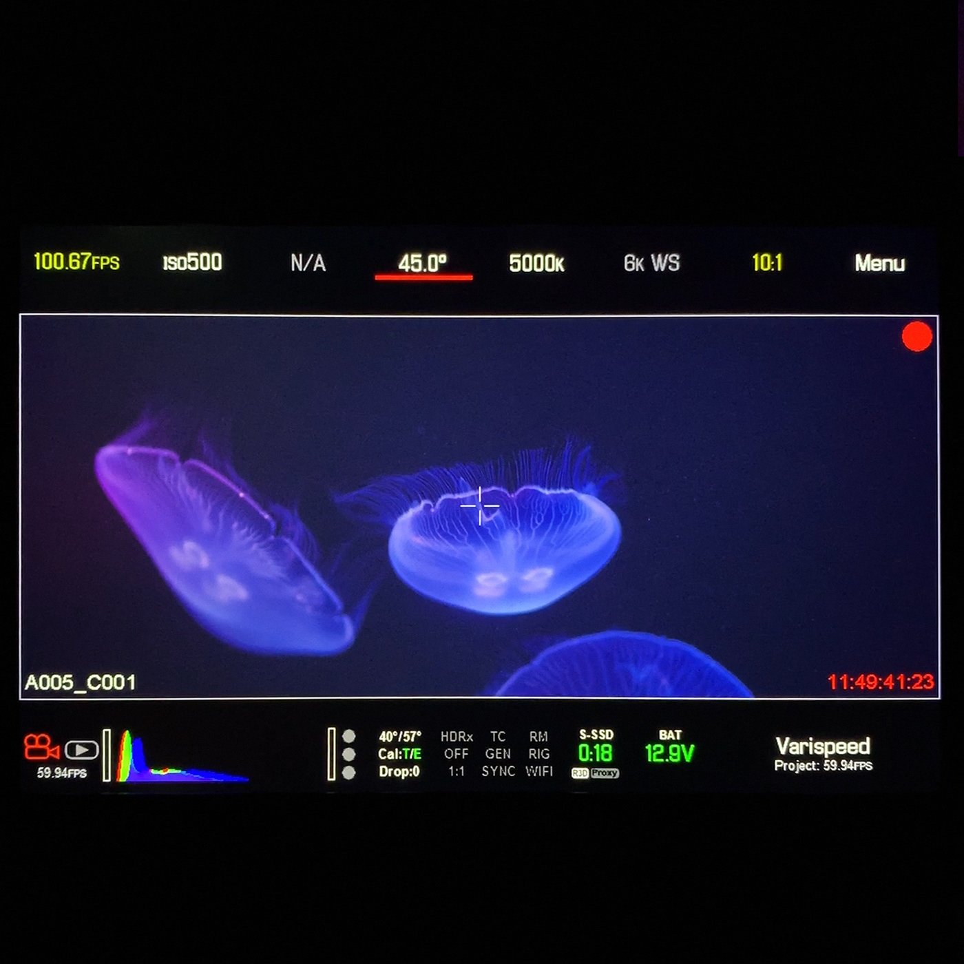 Image may contain: monitor, screenshot and black