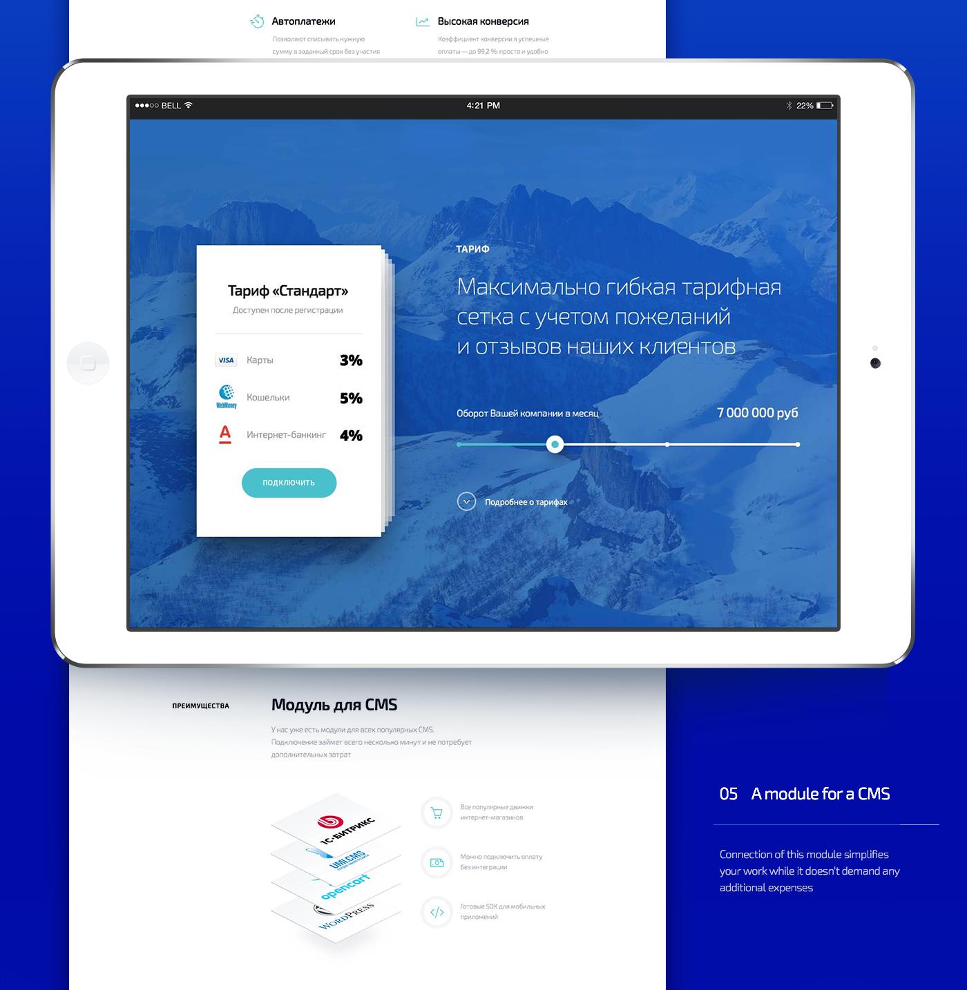 finance payment online Visa mastercard simple UI ux Webdesign acquiring