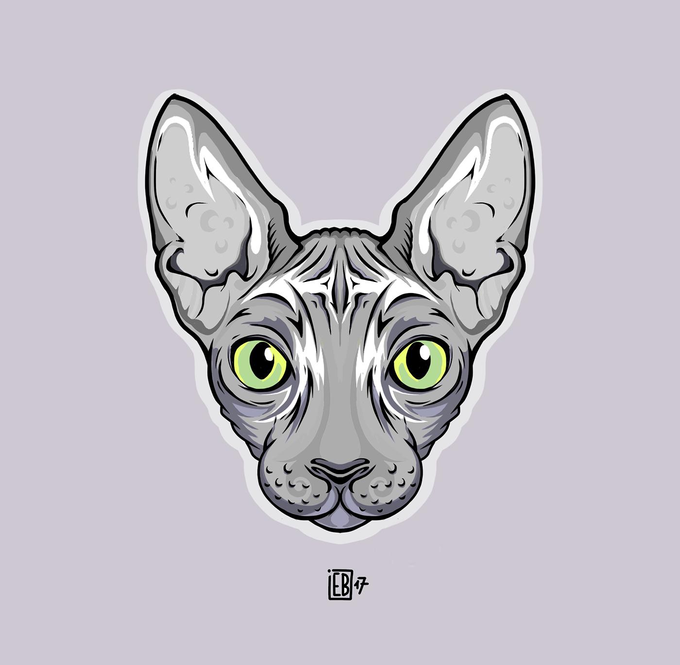 sphynx cat gatto sphinx devon rex cats gatto sphynx yoda animal simmetry LouisVuitton